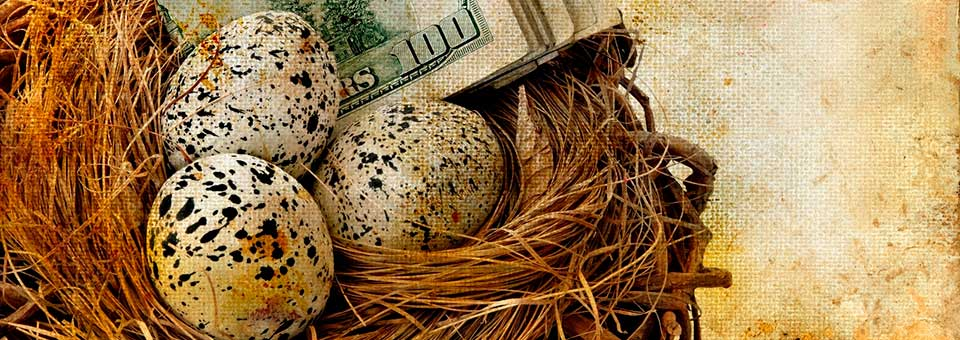 Nest egg with money for a secure future