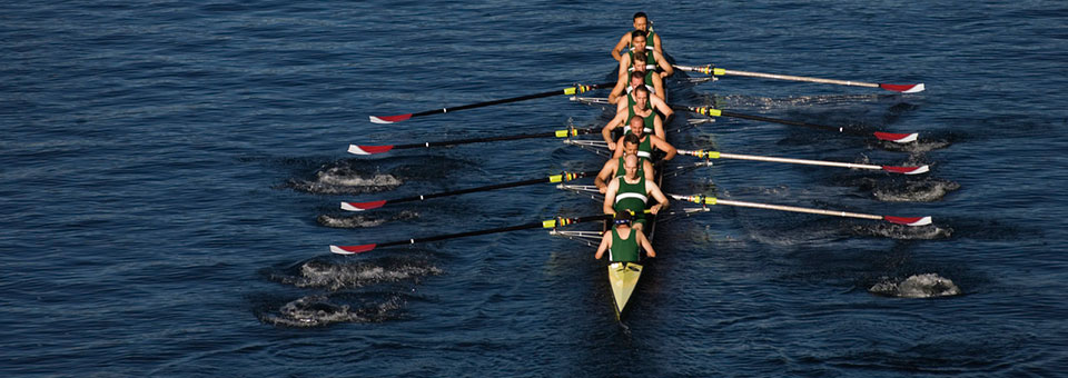 rowing team on water pulling together for investment success | Sheaff Brock Investment Advisors